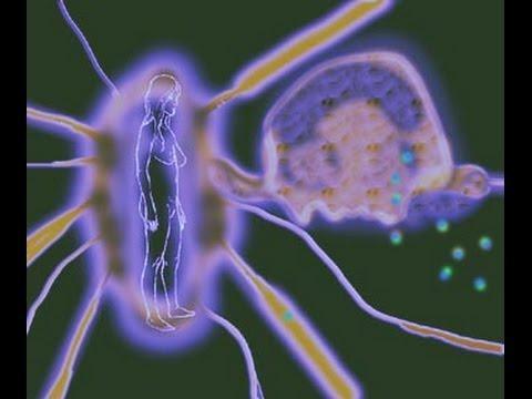 Как подселяется сущность у человеку, подключение сузности к биополю человека