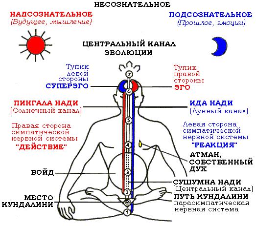 Сушумна, Ида Пингала