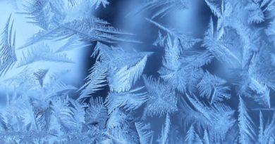приметы и ритуалы на 31 января