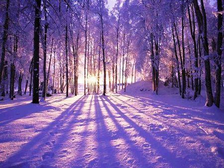 приметы, предсказания погоды по дню солнцестояния зимой